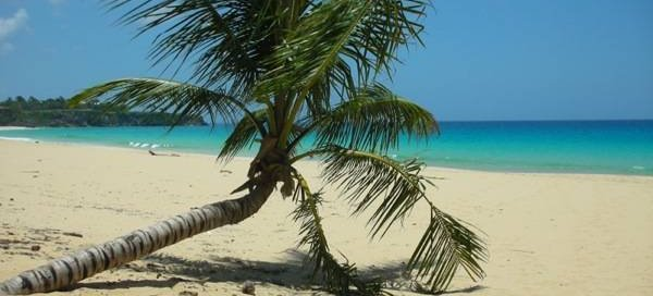 Dominican Nest, Sosua, Dominican Republic
