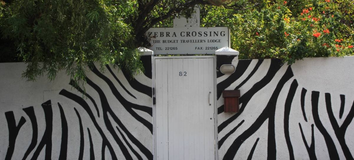 Zebra Crossing, Cape Town, South Africa